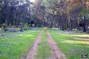 Ruta por la sierra