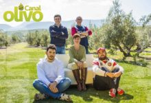Photo of Nace «Canal Olivo», reportajes diferentes con base jiennense
