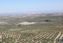 Photo of ASAJA organiza un curso de manipulador de productos fitosanitarios