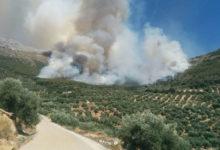Photo of Incendio en pleno Parque Natural de Sierra Mágina