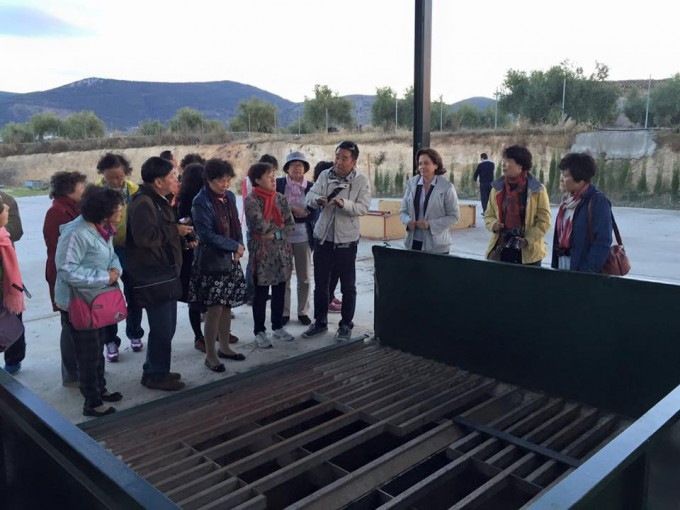 La excursión de turistas chinos visita la almazara Cruz de Esteban