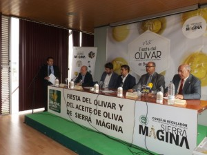 Fiesta del Olivar 2015