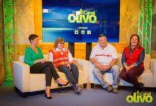 Photo of Especial «Feria de la Juventud 2015» Parte 3 | Canal Olivo