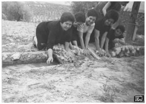 """Familia lavando lana en el """"haza fria"""""""