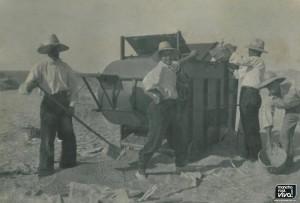 En la época de siega con una cosechadora