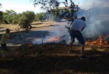 Photo of Incendio en Mancha Real en las proximidades de la carretera de Pegalajar
