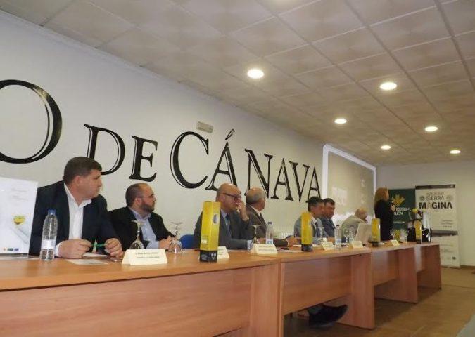 Fiesta del Olivar y del Aceite de Oliva