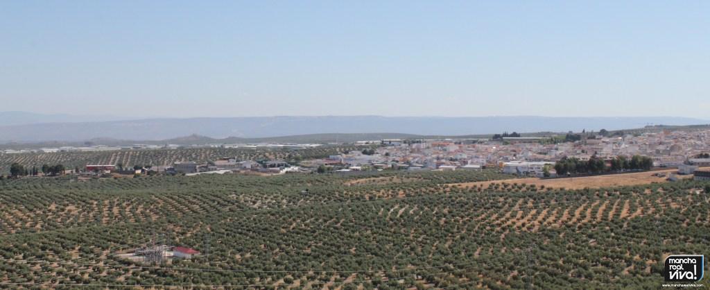 Photo of Los aranceles de EE.UU hacen caer los precios del aceite de oliva