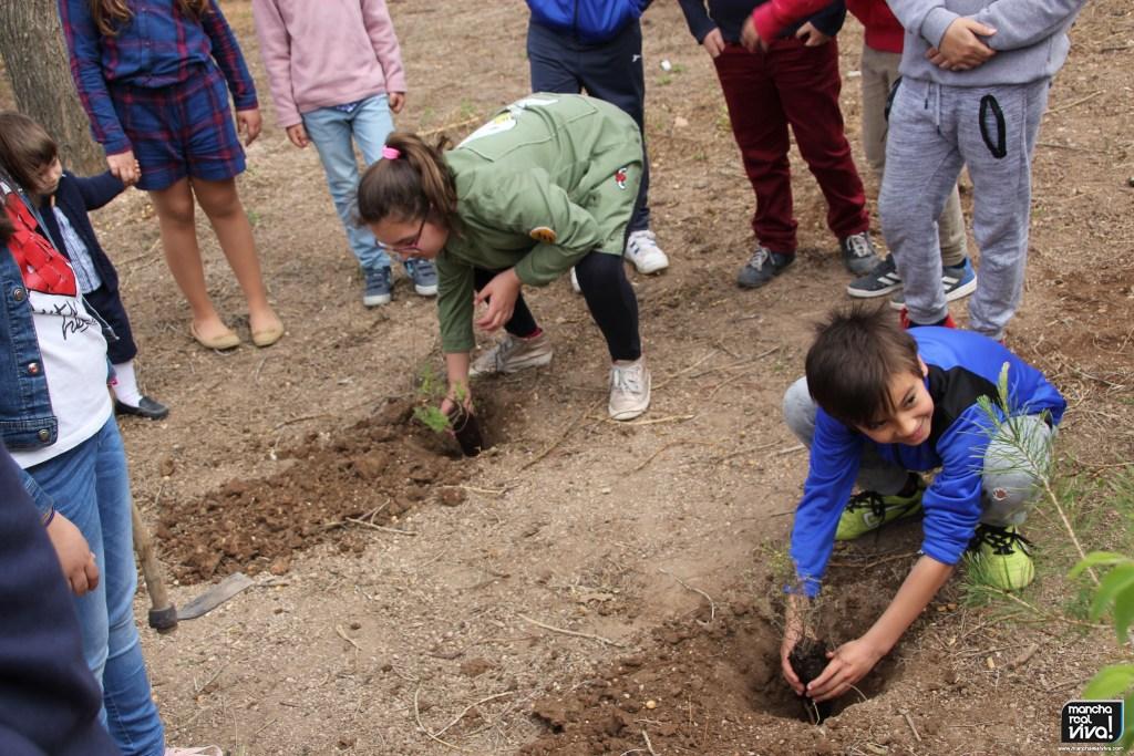 Photo of El CEIP Sixto Sigler participa en el proyecto de la Junta para la plantación de árboles