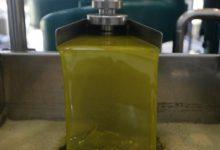 Photo of El sector del aceite de oliva atraviesa una situación límite