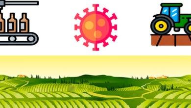 Photo of Guía práctica de medidas para sector agroalimentario relacionadas con COVID-19