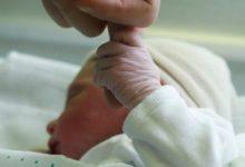 Photo of Datos de natalidad y mortalidad en el mes de junio